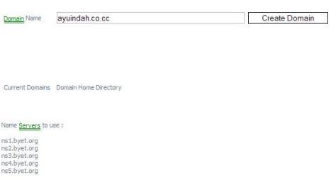 Masukkan domain yang terdaftar di .co.cc